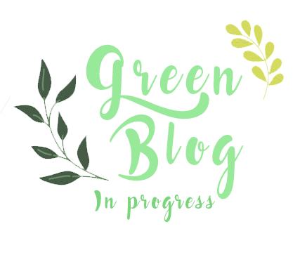 defi-green-blog-in-progress4