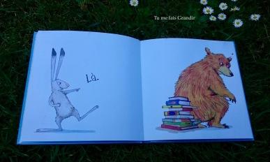 lievre et ours ou est ours? livres