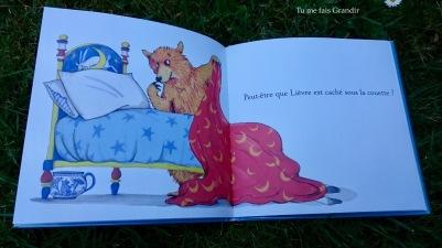 lievre et ours ou est ours? ours lit