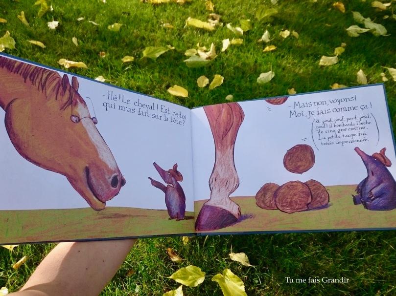 La petite taupe cheval